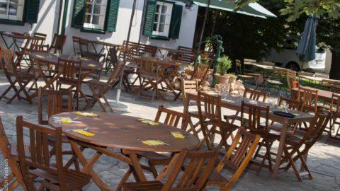weidenhof gastgarten